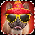Dog Dress Up Photo Montage icon
