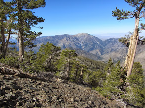 Photo: View west toward Mt. Baden-Powell from the northwest flank of Pine Mt.