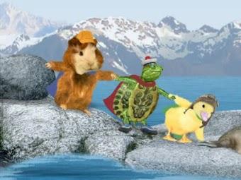 Save the Sea Lions/Save the Kangaroo!
