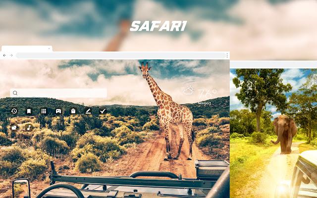 Safari HD Wallpapers New Tab Them