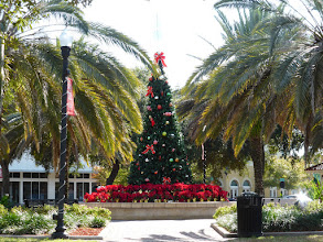 Photo: City Park Christmas Tree, Winter Haven, Florida