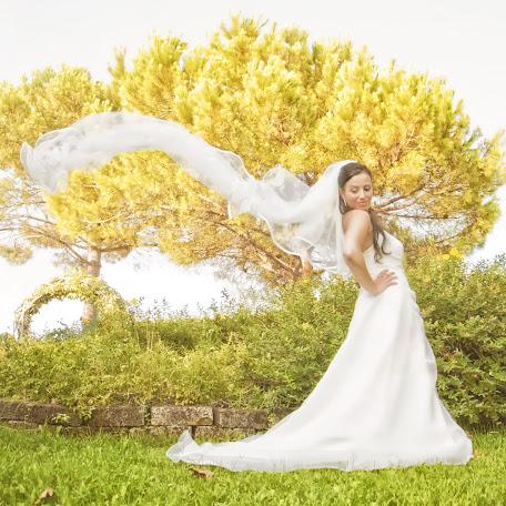 Wedding photographer Alessandro Zuletti (AlessandroZulet). Photo of 15.06.2017