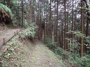 谷間沿いの道を下へ