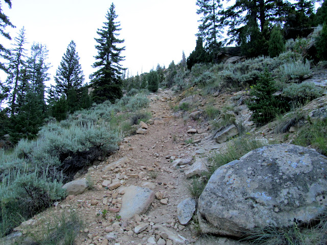 Steep, rocky trail