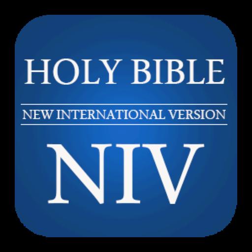 Niv bible online shopping