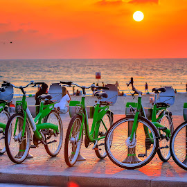 Telaviv by Abu  Janjalani Abdullah - Transportation Bicycles ( transportation )