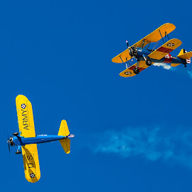 Biplanes by Dave Lipchen - Transportation Airplanes ( biplanes )