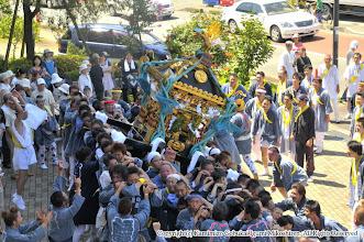 Photo: 【平成21年(2009) 本宮】  コスモスセンター。激しく神輿もみを披露する。