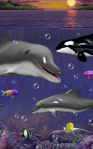 Dolphins and orcas wallpaper screenshot 3