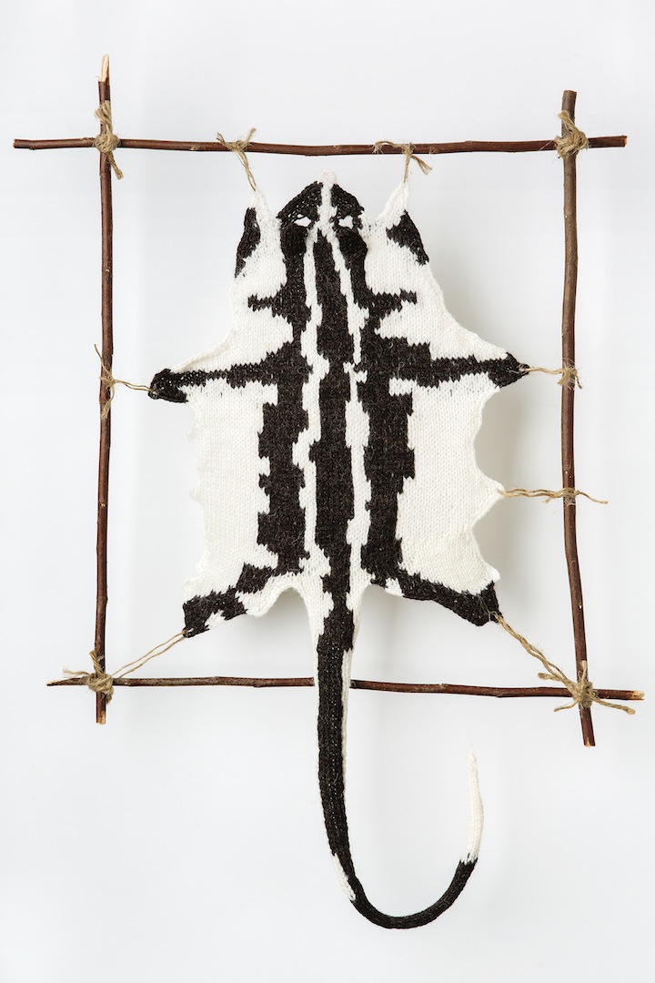 "Photo: STRIPED POSSUM #1 2013 24"" X 8.5"" (61CM X 21.5CM) YARN, STRING, STICKS INTERPRETATION FROM SPECIMEN AT MELBOURNE MUSEUM: SEX-F.  COLLECTED - ?. (C) Ruth Marshall, 2013."