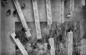 Photo: The Ant Farm - © Ricardo Lagos - Creative Commons (CC BY-NC 3.0)