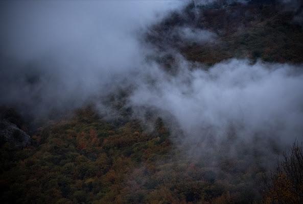 Autunno è nebbia di alessandro_termini