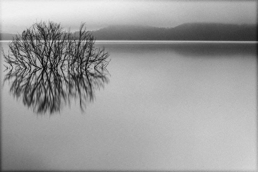 a new black and white edit style by David Davies - Uncategorized All Uncategorized (  )