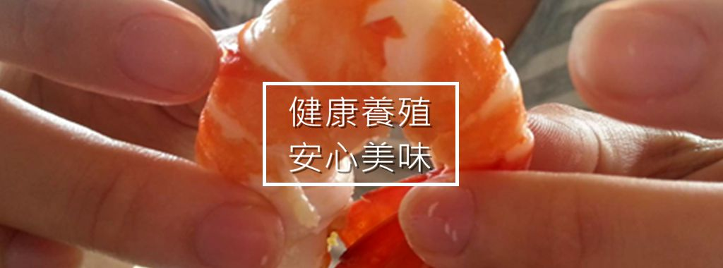 Yeh's Life 好菜好蝦-泰國蝦健康養殖