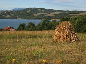 Photo: c'est beau une agriculture non mecanisée