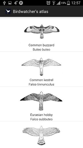 Birds of Europe FULL screenshot