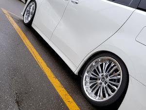 ヴェルファイア AGH30Wのカスタム事例画像 車高低が好きなのです!さんの2020年01月02日10:34の投稿