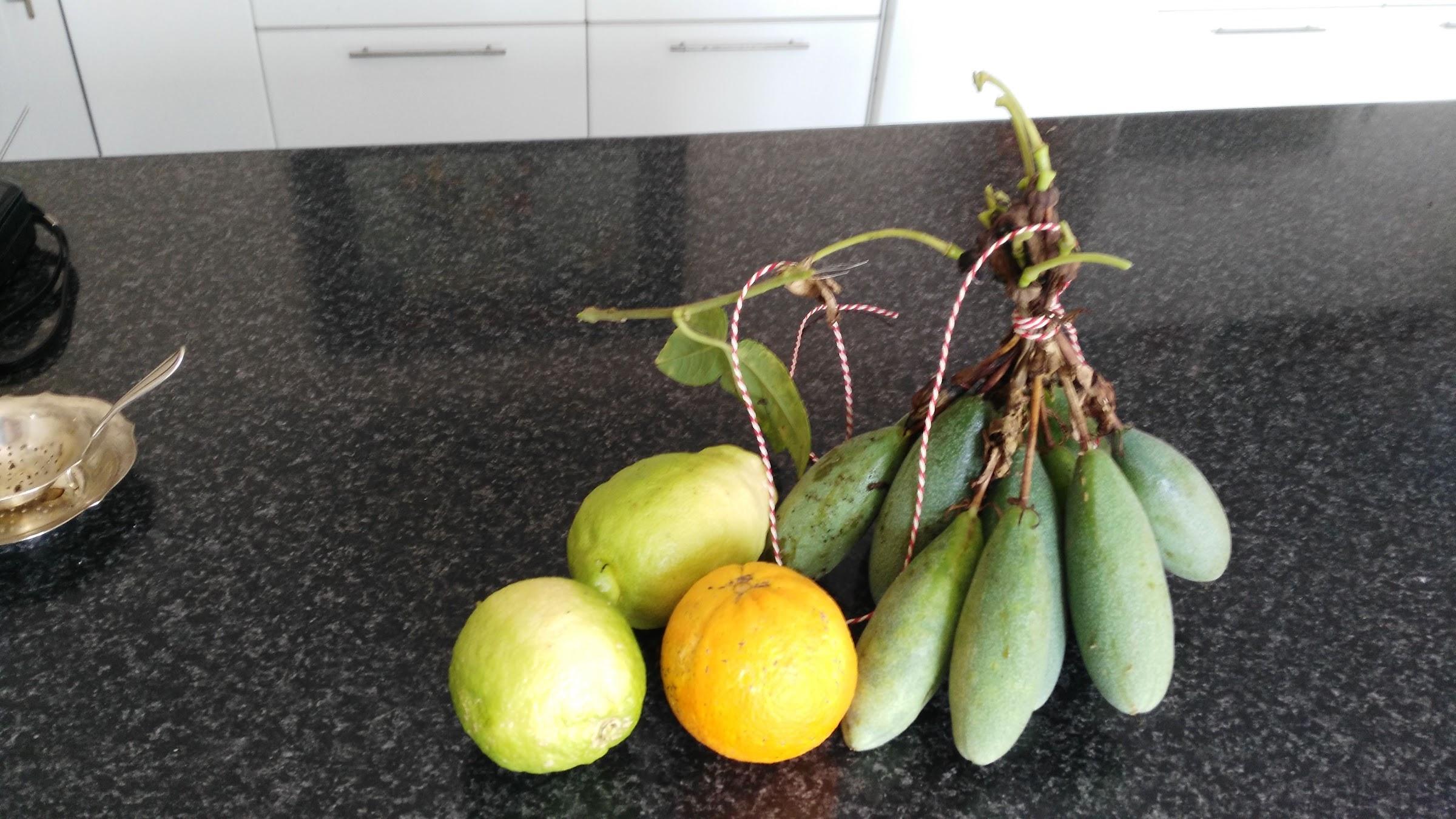 De tuin draagt vrucht!