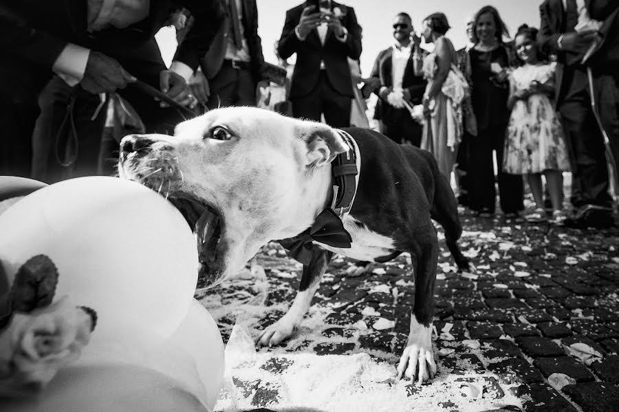 Wedding photographer Barbara Fabbri (fabbri). Photo of 06.02.2019