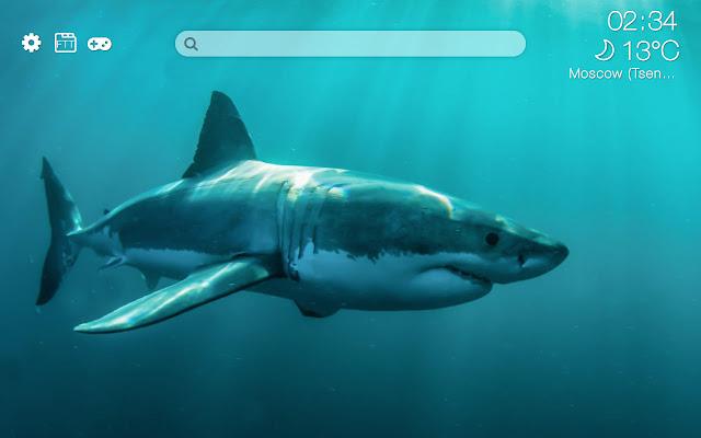 Sharks HD new free tab theme