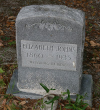 Photo: Elizabeth Raulerson Johns parents unknown / Wife of James Leigh Johns. * Unsure if Raulerson is Maiden name or 1st Marriage!