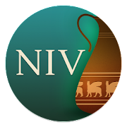 NIV Cultural Backgrounds SB  Icon