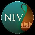 NIV Cultural Backgrounds SB