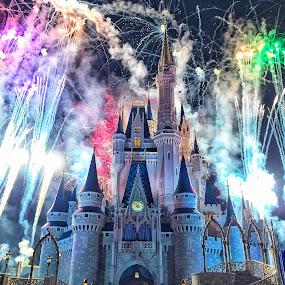 Disney celebration  by Martin Wheeler - City,  Street & Park  Amusement Parks ( colorful disney fireworks celebration night happy fun,  )