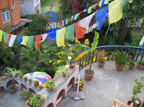 Photo: Blick in den Garten des Hotels
