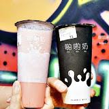 Classic Milk 松江36