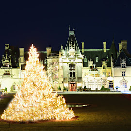 Biltmore mansion by Ruth Overmyer - Buildings & Architecture Public & Historical