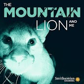 The Mountain Lion and Me