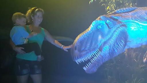 The Dino Expo Boland Park, Paarl, Cape Town : The Dino Expo