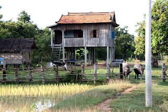 Photo: Year 2 Day 39 - Typical Stilted Home