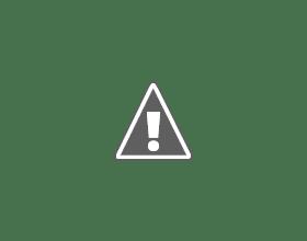 Photo: Guus vindt het wel wat al die sneeuw
