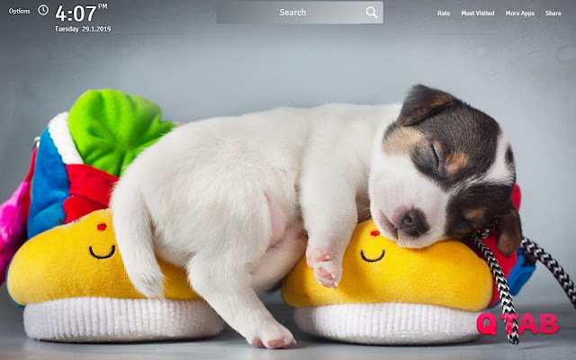 Lovely Puppy and Dog Wallpapers New Tab
