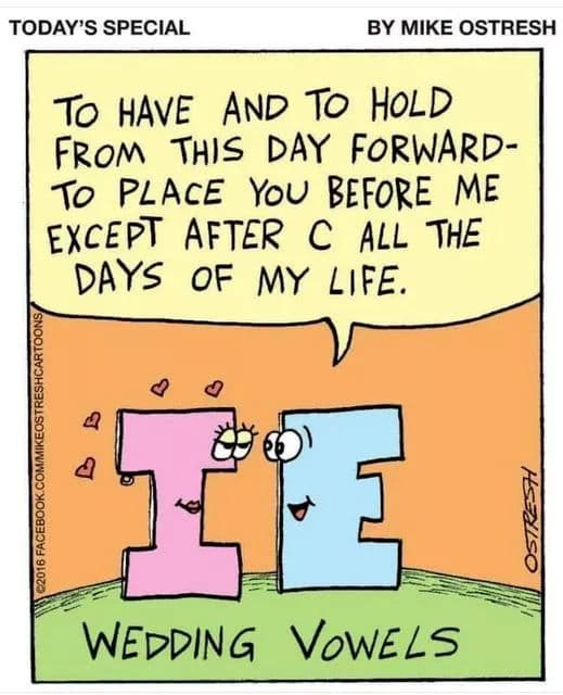 May be a cartoon of text that says 'TODAY'S SPECIAL BY MIKE OSTRESH TO HAVE AND TO HOLD FROM THIS DAY FORWARD- TO PLACE YOU BEFORE ME EXCEPT AFTER c ALL THE DAYS OF MY LIFE. 2018 C WEDDING VOWELS'