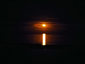 Photo: I in the sky (I know, boo).  The moon over the reef behind us.