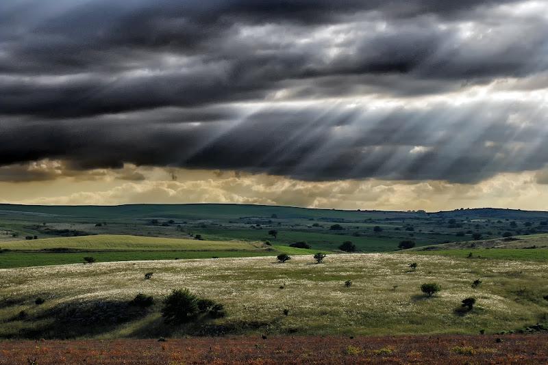 Nuvoloni neri di Diana Cimino Cocco