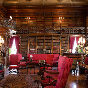 Biltmore library by Lori Rider - Buildings & Architecture Other Interior (  )