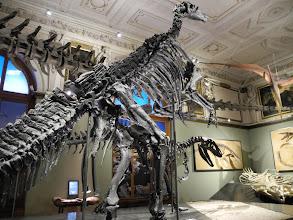 Photo: Le NHM... naturhistorisches museum Wien.