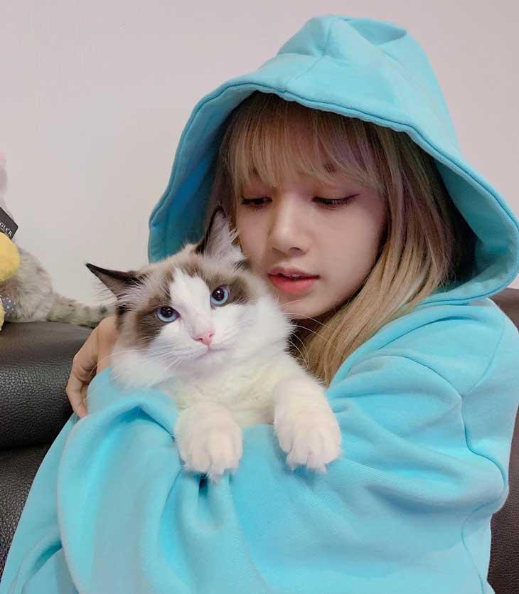 lisa5thcat_2