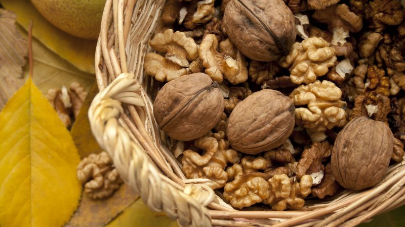 Walnuts Light Up Brain Region That Controls Appetite