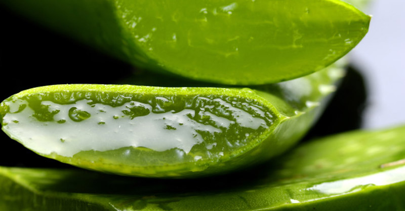 Look 10 Years Younger By Using Aloe Vera