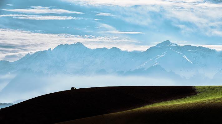 ...... oltre le colline. di renzodid