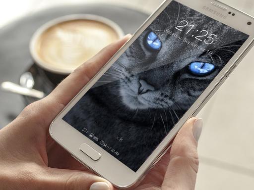 Cat Cute Wallpaper Lockscreen