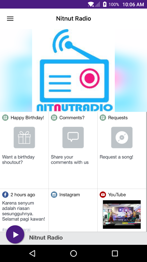 Nitnut Radio- screenshot