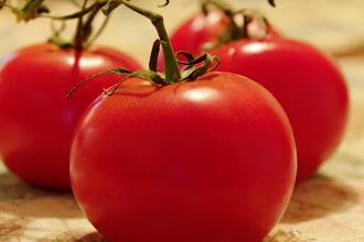 Photo: Tomato Macro