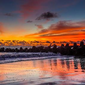 Orange sunset by Sam Moshavi - Landscapes Sunsets & Sunrises