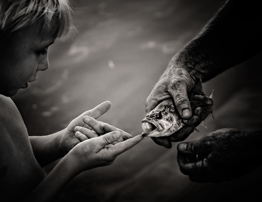 Simple Innocence  by Juliet Newton - Babies & Children Child Portraits ( child, nature, hands, fish, mature, white, candid, black )